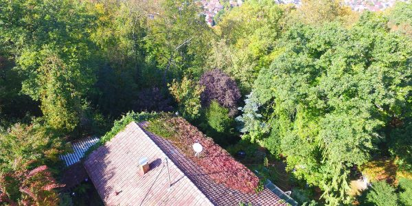 Gerlingen-Schillerhöhe - Freistehendes Einfamilienhaus zum Sanieren in grüner Randlage!